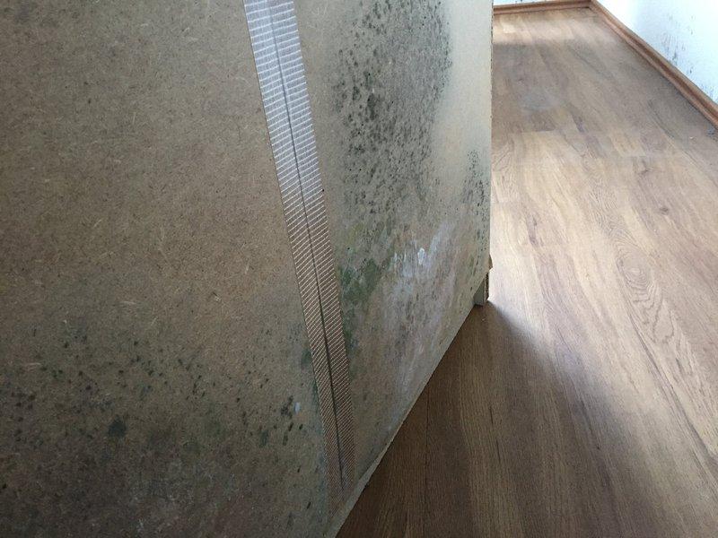 schimmel hinter gallery of schimmel an mobeln schimmel hinter mobeln entfernen with schimmel. Black Bedroom Furniture Sets. Home Design Ideas
